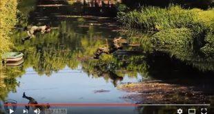 Εντυπωσιακό βίντεο της εκπαίδευσης στη Σχολή Μονίμων Υπαξιωματικών