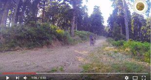 Ελάτη-Περτούλι-Νεραϊδοχώρι δραστηριότητες στη φύση | ΒΙΝΤΕΟ