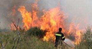 Φωτιά σε δασική έκταση στα Ανταλλάξιμα