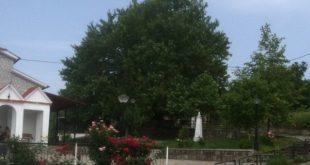 Πρόσκληση για το 14ο Αντάμωμα στην Καλλιθέα Γρεβενών