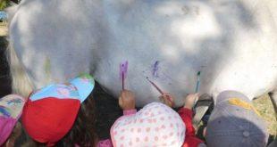 Μηνύσεις για το περιστατικό με παιδιά που ζωγράφισαν σε άλογο