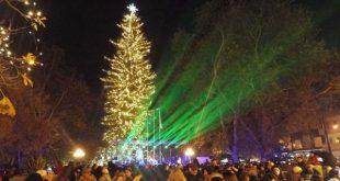 Φωταγωγείται το υψηλότερο φυσικό χριστουγεννιάτικο δέντρο της χώρας