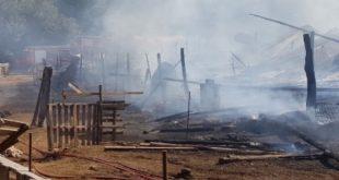 Κάηκαν 500 ζώα σε χοιροτροφική μονάδα των Τρικάλων