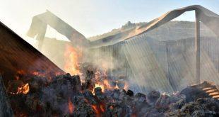 Στις φλόγες ποιμνιοστάσιο στο Γριζάνο Τρικάλων