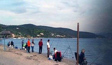 Η θάλασσα γέμισε τσιπούρες – Σε πελάγη ευτυχίας οι ψαράδες