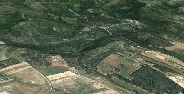 Αναρτήθηκαν οι δασικοί χάρτες των Τρικάλων
