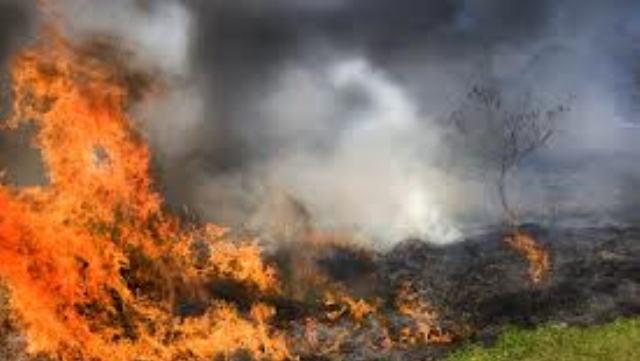 Ανδρας κάηκε ζωντανός στο Ρίζωμα Τρικάλων
