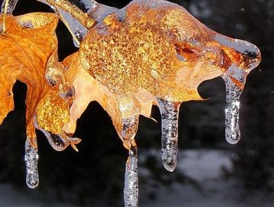 Το σπάνιο φαινόμενο της παγωμένης βροχής