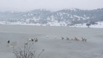 Μοναδικό τοπίο στην παγωμένη λίμνη του Αγίου Βησσαρίωνα
