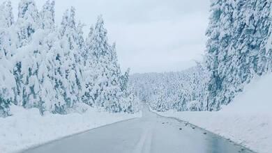 Το χιόνι τα κάνει όλα να μοιάζουν ακόμα ωραιότερα!
