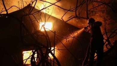 Απανθρακώθηκαν πάνω από 90 ζώα σε στάβλο