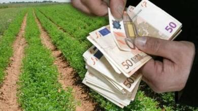 Ενημέρωση για πρόγραμμα με επιδότηση 14.000 € για αγρότες