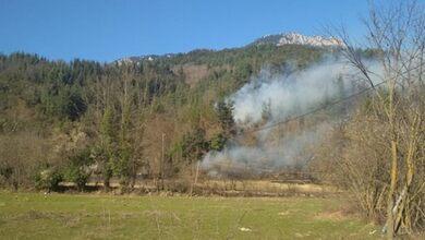 Μεγάλη πυρκαγιά σε δασική έκταση στις Λογγιές Πύλης