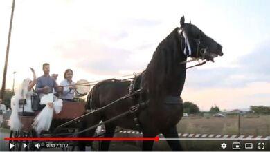 Γάμος με άμαξα στα Τρίκαλα