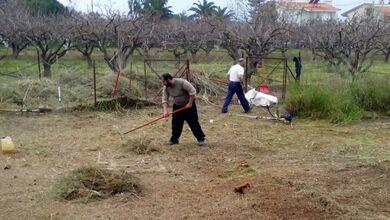 Ο Δήμος Τρικκαίων υπενθυμίζει για τον καθαρισμό οικοπέδων