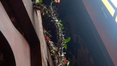 Άνθισε το ακάνθινο στεφάνι του Εσταυρωμένου σε Ιερό Ναό