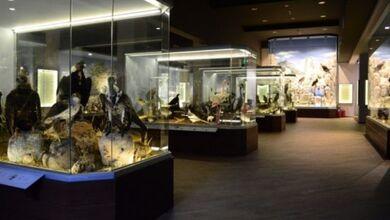 Photo of Θέσεις εργασίας για το περίπτερο του Μουσείου Μετεώρων στον «Μύλο των Ξωτικών» | Αιτήσεις έως 9-11-19