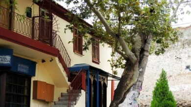 Photo of Πλάτανος ηλικίας 828 ετών στη Θεσσαλονίκη!!!