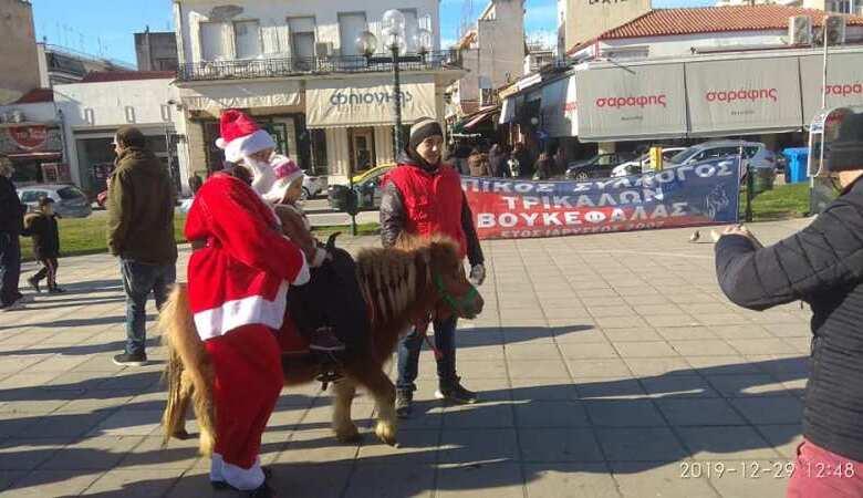 """Άλογα του """"Βουκεφάλα"""" στην Κεντρική Πλατεία Τρικάλων"""