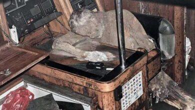 Photo of Πλοίο – φάντασμα περιπλανιόταν με το νεκρό καπετάνιο του στο πηδάλιο για χρόνια