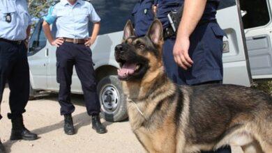 Photo of Σύλληψη Τρικαλινού για ναρκωτικά μετά από έφοδο στο σπίτι του